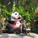 Панды бамбук не курят. Они его едят