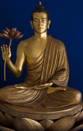 budda-lotus-flower