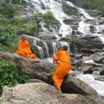 Монах и чай-2.