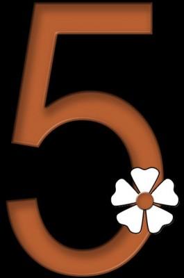 5-five-flower