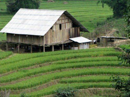 Hmong-home