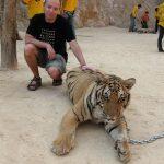 Тигр! Тигр! Тигр! Тигриный храм Канчанабури.
