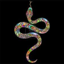 Snake-LSD