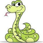 Наиболее распространенные мифы о змеях.