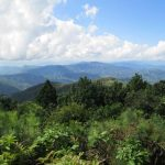 Вдохновение тайских гор. Опиумные караваны на Пути Будды.