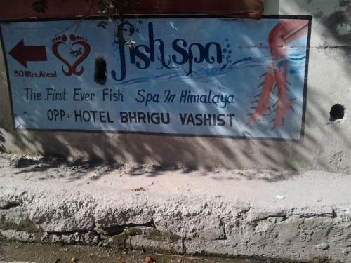 Fish_spa