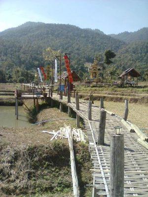 Pai_bamboo-bridge