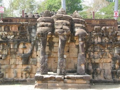Elefant_Terras