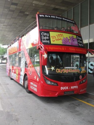 Bus_Singapure