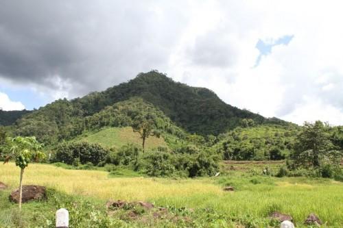 Mountaine