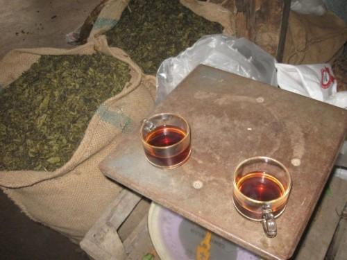 Assam_tea_Thailand